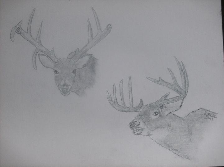 Two Bucks Too - ART