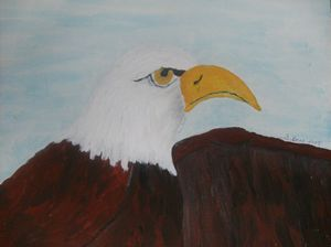 Male eagle - ART