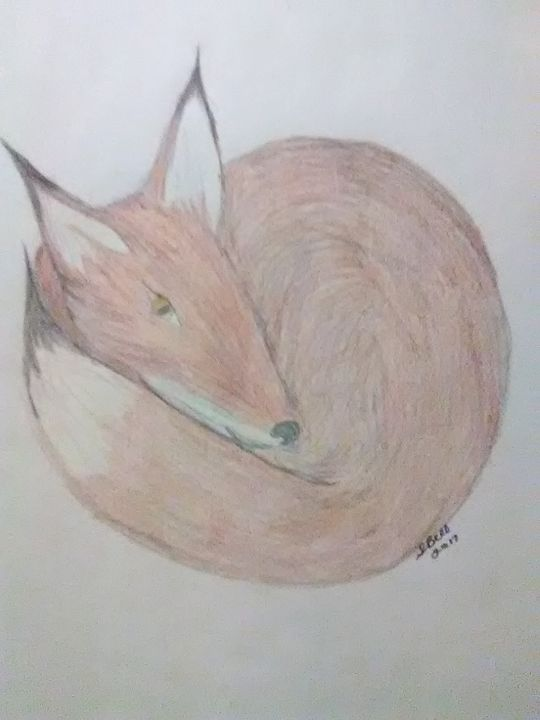 comfy red fox - ART