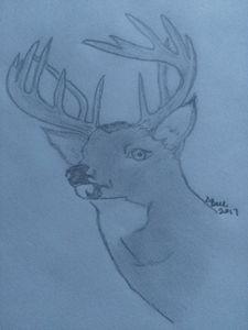 Deer - ART