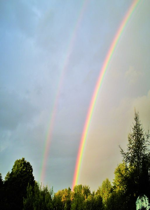 Double Rainbow - ART