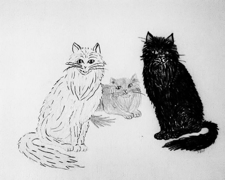 long haired cats - ART