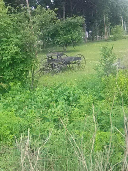Old wagon - ART