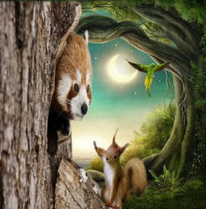 Red panda and friend