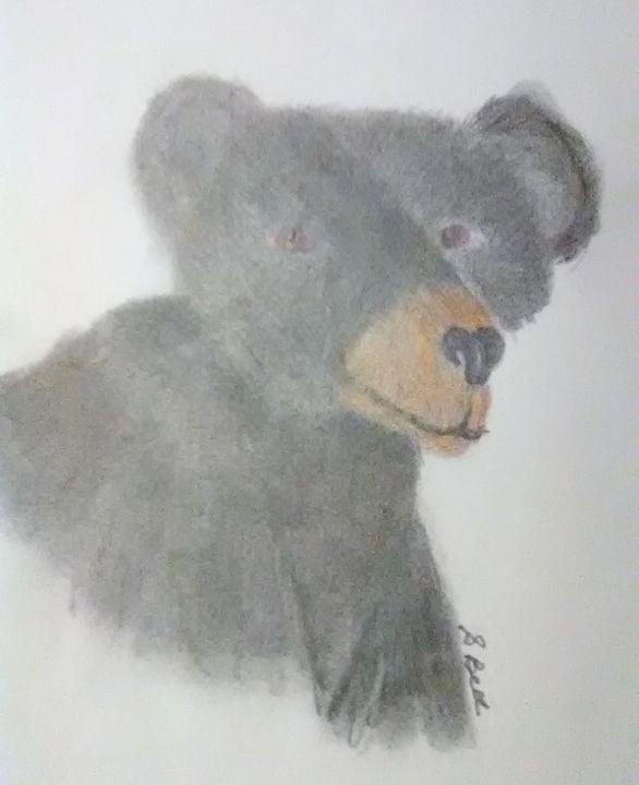 black bear - ART
