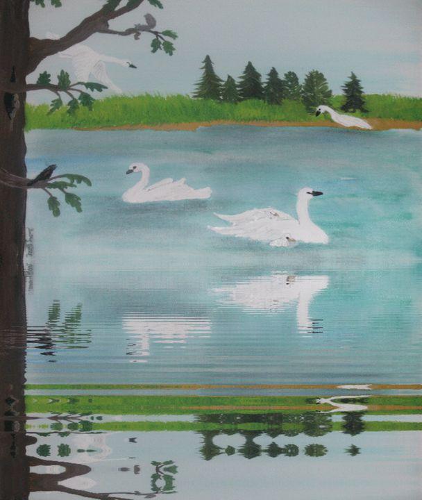 a swans life - ART