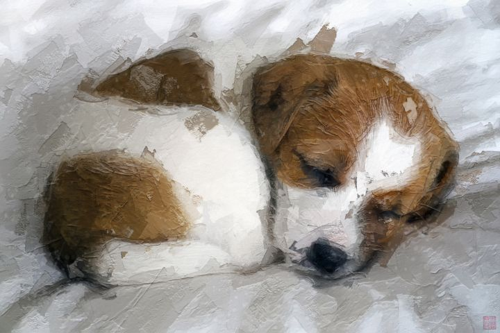 Puppy - Paintings