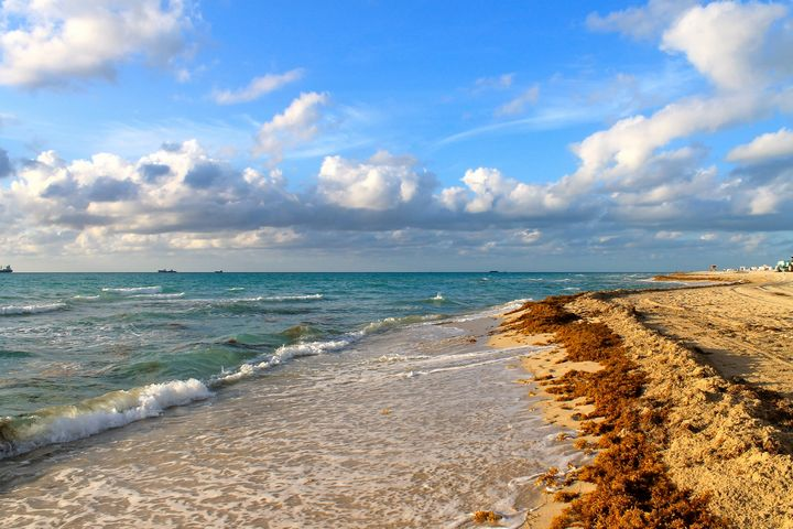 Beach Scene - Whatever By, Jes