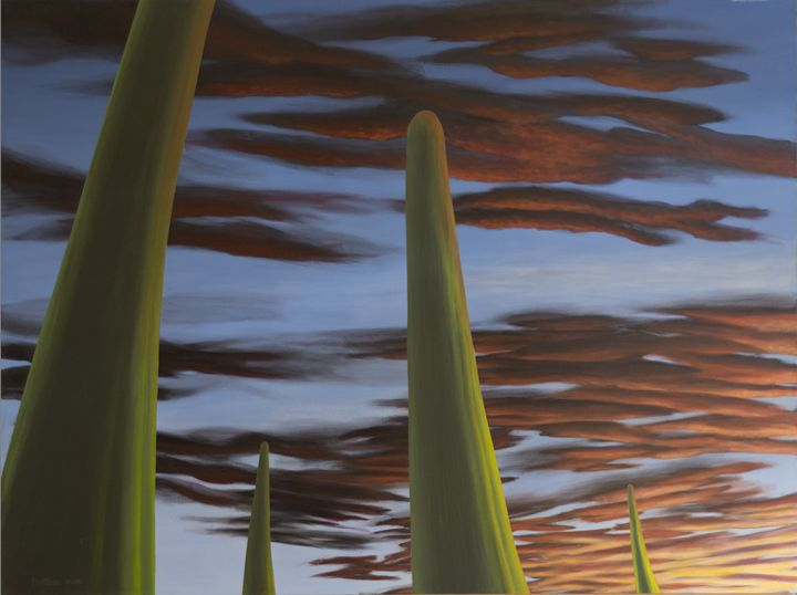 Saguaro Sunset - Paintings by Nintzel