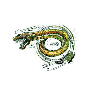The Reel Eel
