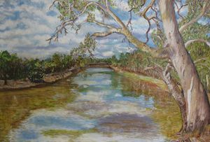 Murray River Scene