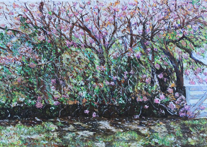 Trees in Blossom Blue Mountains - Landscapes by Adrian