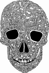 unique skull