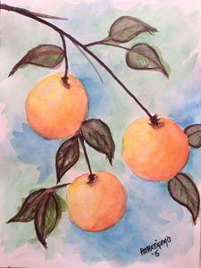 06 Watercolor