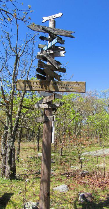 Crossroads of Life - PollockArt