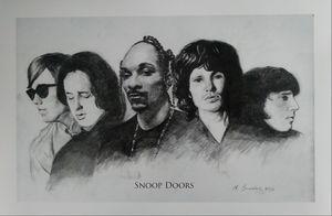 Snoop Doors