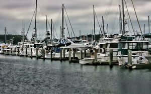 The Marina - Cathy Harper Photography and Designs