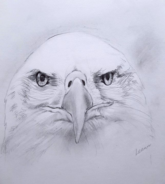 Old Eagle Eye - Shadow and Form