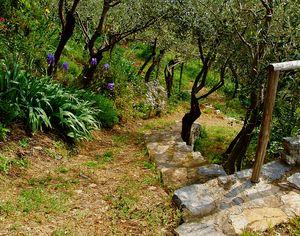 Stairway to the Bottom Garden