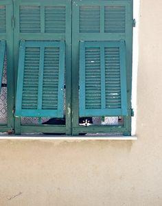Seborga Cat