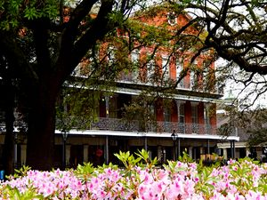 Springtime in New Orleans