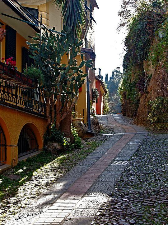 Portofino Village Lane - Peter Horrocks Art