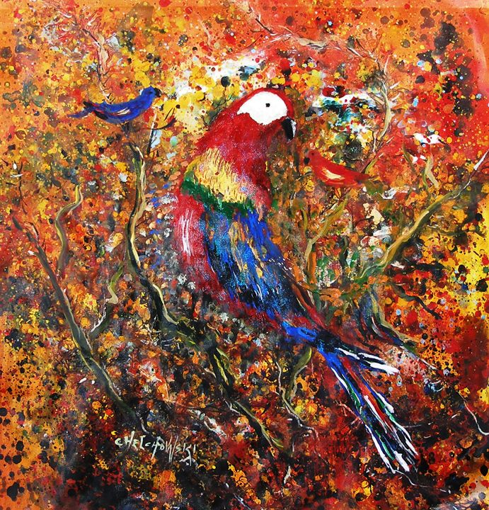 beauty of a parrot - art paintings by miroslaw chelchowski