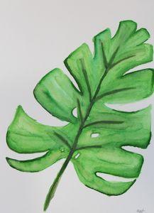 palm leaf 1