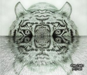 digital water tigre