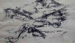 Tern in flight - Bronwyn Garfirth
