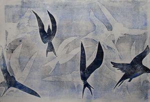 Arctic Tern frenzy - Bronwyn Garfirth