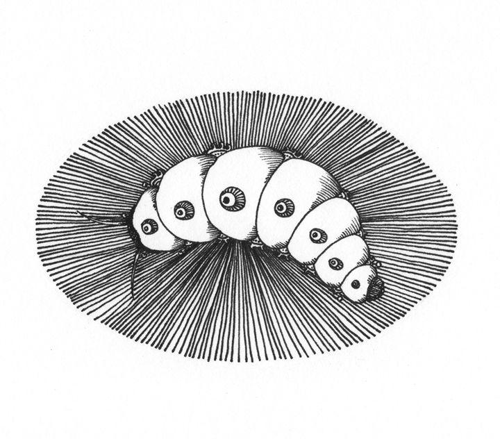Larva - Maja Bertole Jeras