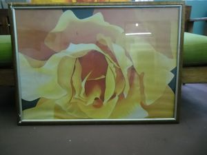 Yellow rose poster signed