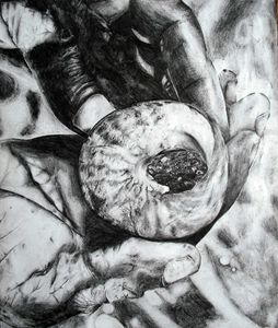 shell in hands