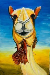 Megan the camel