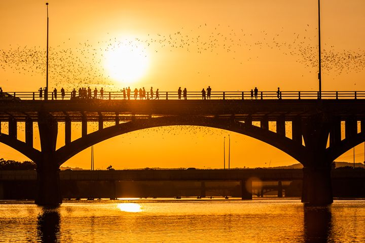 Bridge at Sunset - Man On A Roof Productions