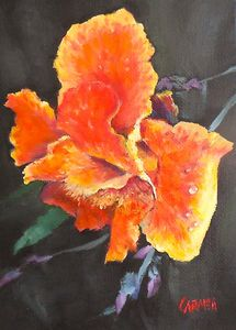 Orange Canna Lily - Carmen Beecher