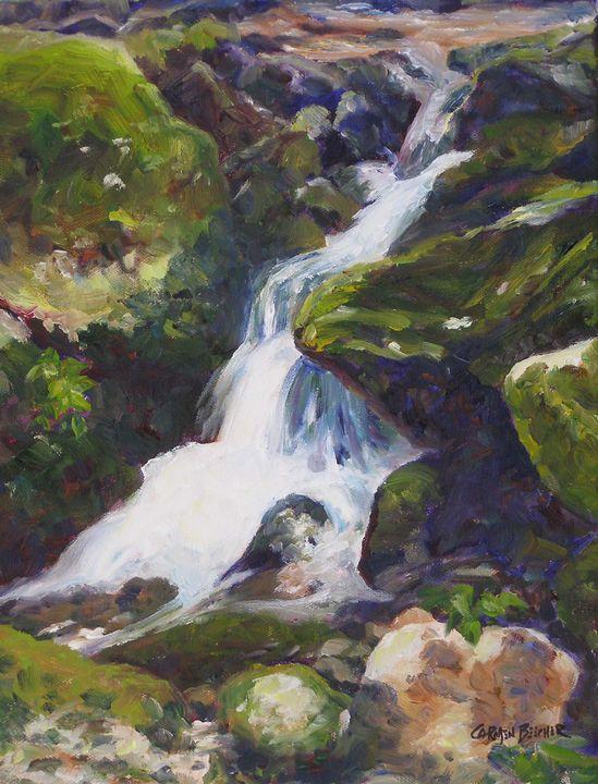 Waterfall - Carmen Beecher