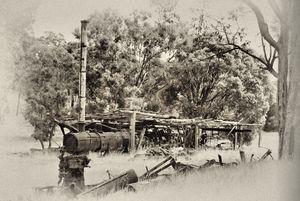 Steam driven sawmill.