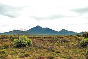 A view of the Porongerups