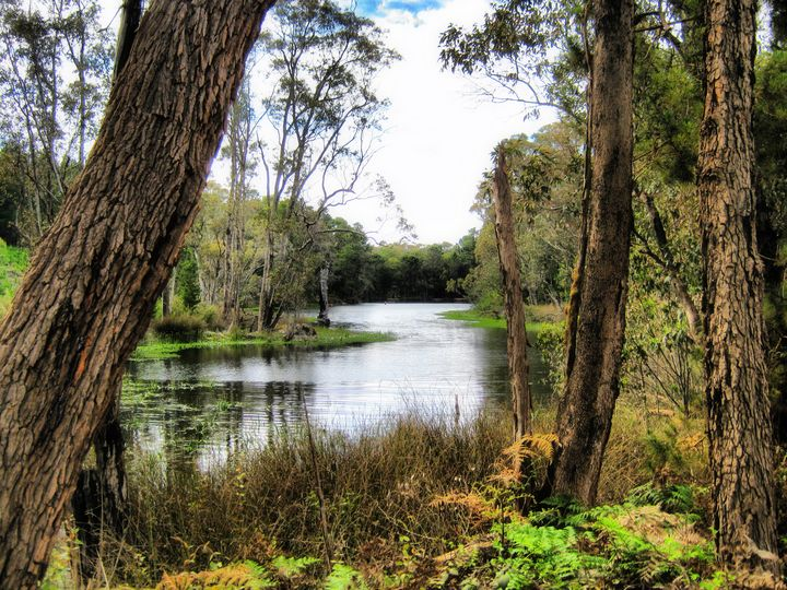 river dreams - Adbetron