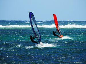 Sailboard action