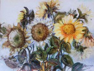 Sunflowers, rujoanca,oil Bissinger