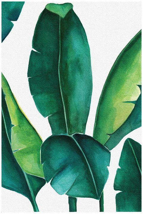 Banana leaf print, Botanical Print - PDFDecor
