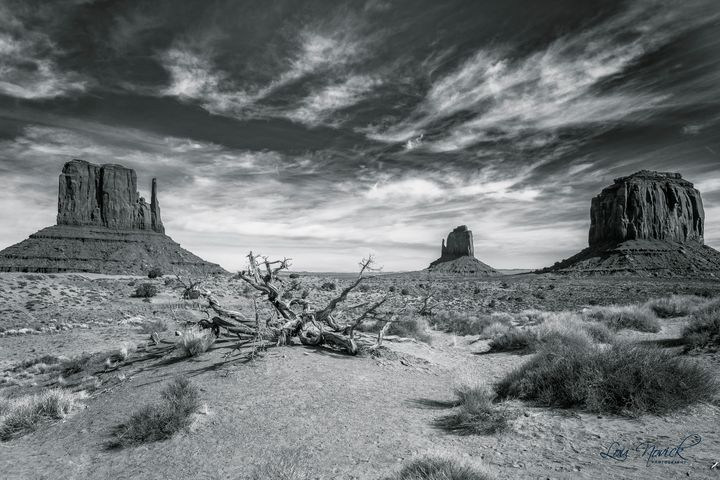 Monument Valley - Lou Novick