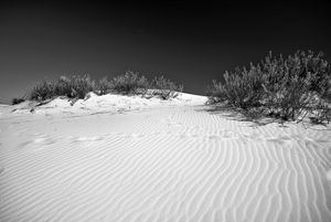 White Sands National Monument #5