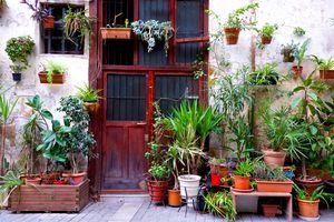 Barcelona Front Door Garden