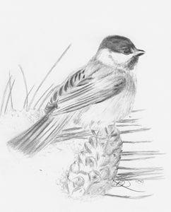 Chickadee - Brenda Davidson
