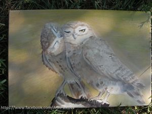 Oil painting Sweet owl
