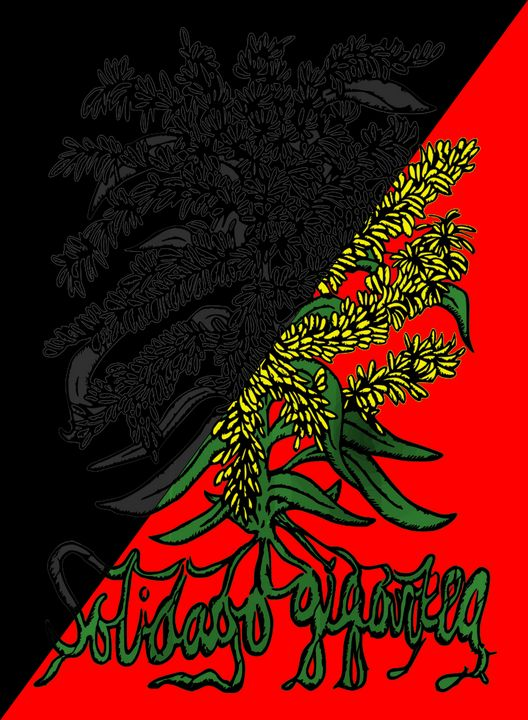 Solidago Gigantea - Anarcho-synd - Solidago Gigantea - Kentucky